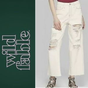 🍃🖤New Wild Fable High Rise Cream Skater Jeans